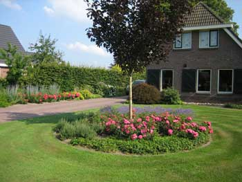 Tuinen aanleggen middenin de zomer of winter kan dat